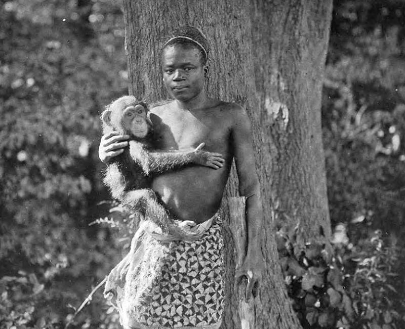 ota-benga-chimp